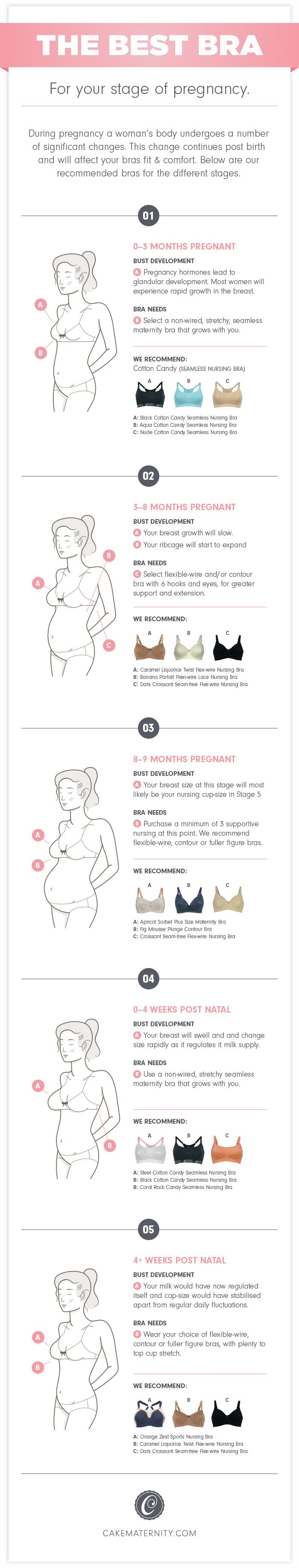The Best Bra for Your Stage of Pregnancy Infographic