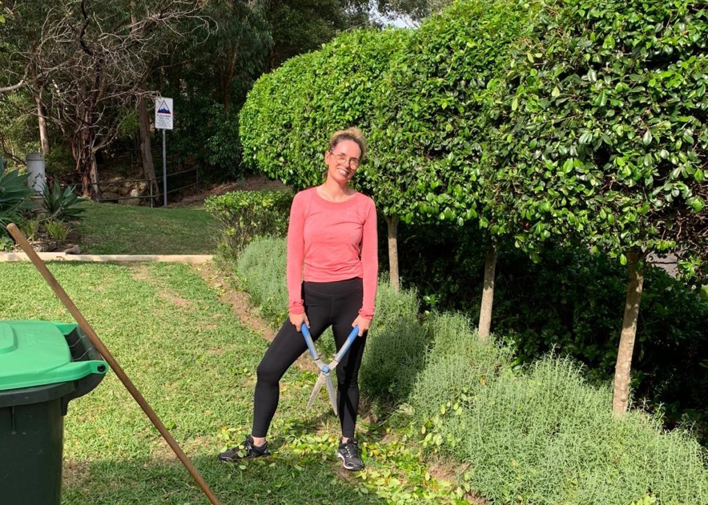 trimming hedges in the garden