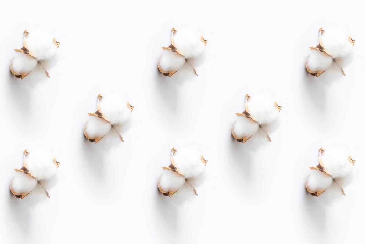 white cotton on white surface